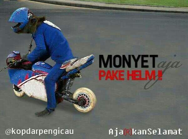 kopdar pengicau_poster3monyet