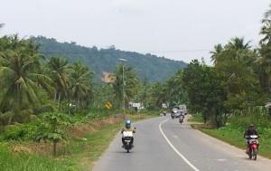 jalan di pelosok